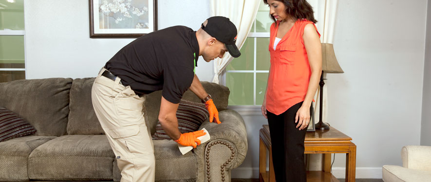 El Centro, CA carpet upholstery cleaning